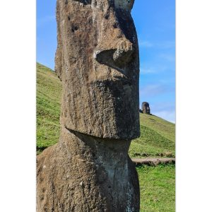 Moai Statuen Anzahl